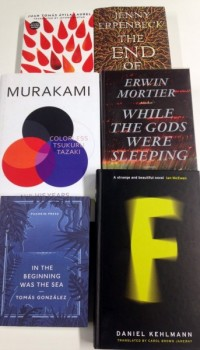 Win the Complete International Foreign Fiction Prize Shortlist!